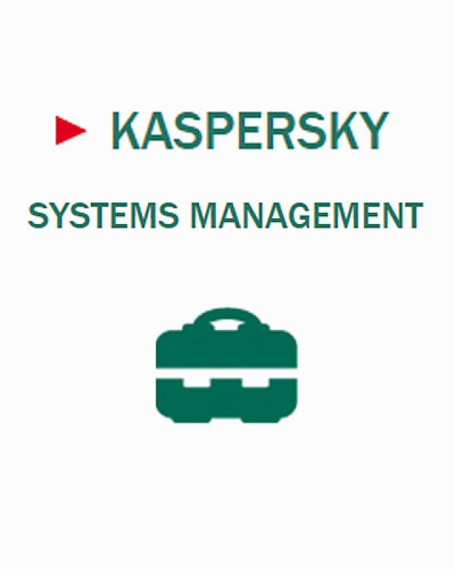 Kaspersky Systems Management, 1 Jahr Base, Download, Lizenzstaffel, Multilingual (10-14 Lizenzen)