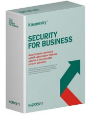 Kaspersky TOTAL Security for Business, Government, 3 Jahre Base, Download, Lizenzstaffel, Multilingual (15-19 Lizenzen)