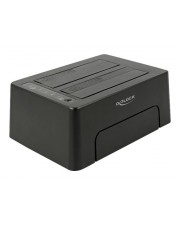 Delock USB Type-C 3.1 Dockingstation für 2 x SATA HDD/SSD