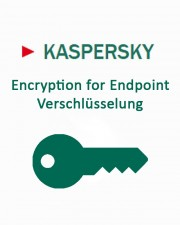 Kaspersky Encryption for Endpoint 2 Jahre Add-On Download Lizenzstaffel, Multilingual (250-499 Lizenzen)