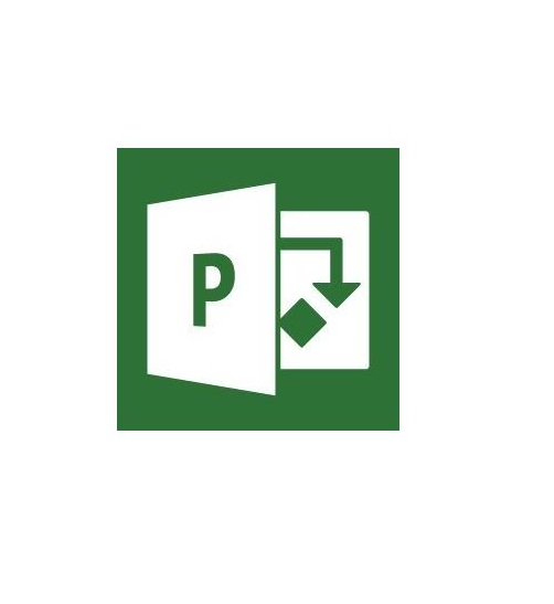 Microsoft Project Professional 2019 PKC, Deutsch