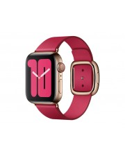 Apple 40mm Raspberry Modern Buckle Small