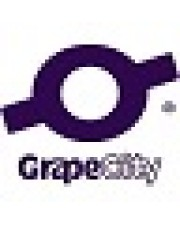 GrapeCity UPG ComponentOne Studio 2020 v2 1 Developer 1Y from any previous version of Elektronisch/Lizenzschlüssel Upgrade